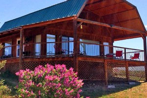 Wilderness Spirit Cabins - pets welcome